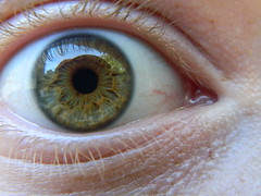 My Eye... (Sorrow Whisper) Tags: blue brown macro eye up yellow gold amber close shot