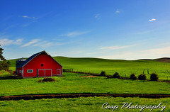 Palouse Red Barn (Coop Photography) Tags: road red 6 green field barn photography washington spring nikon hill may dirt lone wa coop eastern 2012 palouse d90