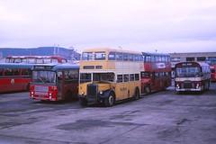 Highland Omnibuses Seafield Road Depot (Guy Arab UF) Tags: road bus buses group scottish highland depot alexander titan inverness 1953 leyland seafield lowbridge omnibuses pd212 northernalexander nrb162 dwg918