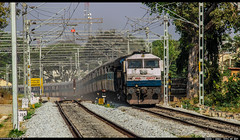 Tippu at Channapatna !! (sany20005) Tags: railroad canon bangalore tracks rail rails mysore scenes indianrailways emd electriclocomotive tippu canonphotography canonphoto channapatna wdp4 emdlocomotive gt46pac tippuexpress eos600d canoneos600d ublwdp4 wdp4photo