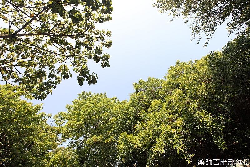 Park_133