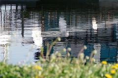 Belgrade (ahfeelabout) Tags: river serbia belgrade danube pentaxq