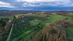 Sorvolando vicino Picille (Sdroneggiando) Tags: green grass landscape country campagna montevarchi tuscany phantom toscana landschaft valdarno drone dji picille tuskana