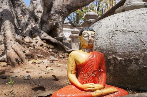 anuradhapura - sri lanka 23