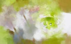 Lonely Planet - Tropfen (macplatti) Tags: austria artwork digitalpainting columbine springtime frhling aut paintart akelei vorarlberg koblach