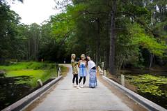(Bronte Lockwood) Tags: life road trip travel bridge pink trees girls sky green water forest coast nikon country free australia east queensland hippie van camper bronte yamba lockwood eumundi yandina