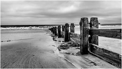 Alnmouth . (wayman2011) Tags: uk beach mono coast seaside seascapes northumberland alnmouth canon5d lightroom bwlandscapes wayman2011