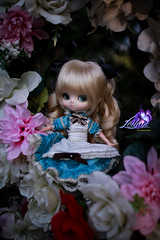Tucked Away (dreamdust2022) Tags: cute girl loving happy hug kiss doll child heart little sweet dream young pure magical playful tender leilani podo yeolume