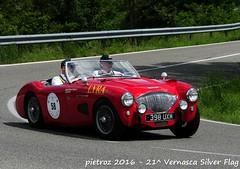 - Austin Healey 100 M Le Mans - 1955 - Wood David Roberts - Club Austin Healey (pietroz) Tags: silver photo foto photos flag historic fotos pietro storico zoccola 21 storiche vernasca pietroz