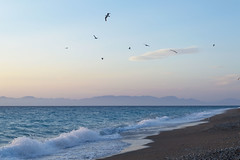 Come fly with me. (anek07) Tags: blue vacation seagulls white mountains beach birds clouds fly wings sand waves stones turquoise horizon windy shore foam gravel rhodos windybeach rhodoscity