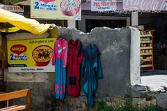 Manali to Leh Bus Journey by Himachal Tourism Bus-4 (Sanjukta Basu) Tags: manalitoleh roadtrip road manali leh ladakh himachaltourism busjourney himalayas swbt solobudgettravel solofemaletravel solotravel singlewomanbudgettravel