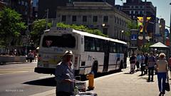 STO 9204 (1) (Alexander Ly) Tags: ontario canada bus classic public nova de coach quebec ottawa transport sto transit gatineau motor autobus industries mci societe outaouais novabus tc40102a