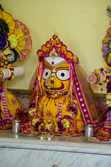 2016.06.30 (Darshan pictures ISKCON, Hungary) Tags: flowers summer color yellow temple hungary religion budapest altar turban chariot darshan deities krisna iskcon jagannatha subadra baladeva