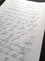 Prctica Spencerian (xelo garrigs) Tags: calligraphy copperplate caligrafa spencerian calligraphie calligrafia xelogarrigs