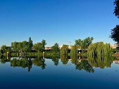 Spreeblick (mirko.borgmann) Tags: morning moon berlin apple mond capital luna smartphone blau ufer spree morgen spiegelung iphone frh 6s wasserspiegelung