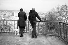 Minolta Hi-Matic G - Couple Looking at Brno (Kojotisko) Tags: bw streetphotography brno creativecommons czechrepublic streetphoto vx400 konicamonochromevx400 minoltahimaticg konicamonochrome