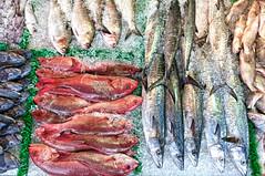 Fish Weave (Sky Noir) Tags: red food usa fish black ice cooking photography mackerel us display market bass unitedstatesofamerica spot daily fresh atlantic meal ingredients seafood local abundance snapper croaker skynoir