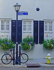 French Quarter (Andy Latt) Tags: bicycle spring southcarolina charleston firehydrant frenchquarter finepix shutters fujifilm andylatt hs20exr dscf24181