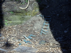 CHILDHOOD NOSTALGIA:  old steps up rockbank to highway (PilgrimElaine) Tags: fun interesting rocks bank dirt nostalgic ladder backyards trafficcircle ithacany rockbank eveningshadows brokensteps makeshiftsteps 4122012 stepstoroad