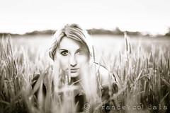 The beauty of nature (100% made in Friuli) Tags: light sunset portrait italy love girl canon vintage 50mm italia tramonto wheat 5d ritratto zuiko amore luce ragazza friuli f12 frumento pradamano