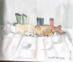 "puddle boot pups • <a style=""font-size:0.8em;"" href=""http://www.flickr.com/photos/77471886@N08/7434832640/"" target=""_blank"">View on Flickr</a>"