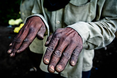 Miner's hands. Kawah Ijen, Java. (Matt Paish 2013) Tags: man male horizontal indonesia asian volcano java intense movement workers asia basket outdoor plateau labor smoke documentary crater baskets chip strong sulphur worker block strength dust sulfur heavy crush powerful indonesi indonesien slab breaking intensity fumes  indonsie eastjava ijencrater ijen kawahijen indonezja midview ijenvolcano indoneesia  sulphuricfumes   sulphurminer sulfurminer ijencaldera indnesa  indonzija indonezio indoneziya indonisa  sufuricfumes sulfuricfumes workingijencrater craterofkawahijen ijenvolcaniccrater sulfurminersofijen sulfurminersofkawahijenijensulfurmining ijensulphurmining sulfurminingatijen sulphurminingatijen kawahijensulfurmining kawahijensulphurmining kawahijensulfur kawahijensulphur