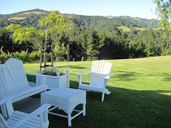 Adirondack Chairs (russelljsmith) Tags: friends newzealand summer vacation holiday color green sunshine garden table fun chair chairs lawn bach nz adirondack 2012 77285mm