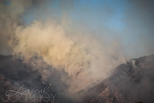 Alpine Quail Fire (21 of 33)