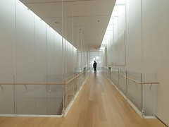 Elevated walkway (^<v>) Tags: wood light lines architecture interior parquet piano ceiling renzo false