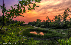 Beachwood City Park West/ Beachwood  (Yuanshuai(TIM) Si) Tags: park city sunset summer urban lake west nature forest lens landscape photography pond angle pentax si cleveland wide da smc limit  hdr k5  beachwood        15mmf4   yuanshuai pentaxart  dashuai