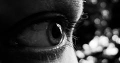 Just A Glimpse 356/365 (Lens felicis) Tags: portrait blackandwhite white selfportrait black macro eye self germany bayern deutschland bavaria nikon sonnenuntergang portrt 365 makro auge 2012 selbstportrt d90 selbstportait project365 365days 365project