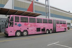 1990 Prevost H5-60 articulated coach (JarvisEye) Tags: pink canada bus coach novascotia halifax autobus 1990 1003 prevost hollandamerica westours articluated ambassatours h560 canadaianbreastcancerfoundation