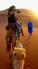 "Morocco day 3<br /><span style=""font-size:0.8em;""><a href=""http://www.bagpacktraveller.com"" rel=""nofollow"">Our Travel site</a><br /><br /><a href=""http://www.facebook.com/Bagpack.Traveller"" rel=""nofollow"">Facebook</a></span> • <a style=""font-size:0.8em;"" href=""http://www.flickr.com/photos/58790610@N06/8162445071/"" target=""_blank"">View on Flickr</a>"