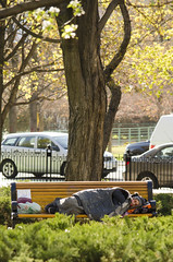 Invisible Slumber (flashfix) Tags: park ontario canada cars nature leaves lines fence bench person nikon downtown ottawa homeless streetphotography bags mothernature confederationpark belongings 2016 d7000 differentlifestyle 55mm300mm 2016inphotos may102016
