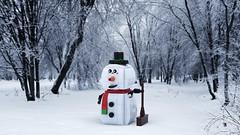 Snow Man (wlange69) Tags: oulu talvi
