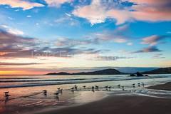 bombas-0065 (iedafunari) Tags: santa praia brasil mar barco gaivotas catarina amanhecer bombas canoa bombinhas