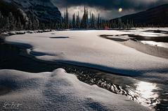 Fresh Snow (johnfuj) Tags: ca canada alberta northamerica northsaskatchewanriver banffnationalpark westerncanada prairieprovinces canadianprairies graveyardflats nikond300s improvementdistrictno9