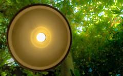 Brighter than the Sun (umang0506) Tags: art disneyland indianajones disneyadventurepark