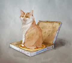 Pizza box (Shmoonify) Tags: cats cute illustration cat funny box pizza pizzabox