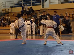 stefanou_15_5_2016_knockdown_108