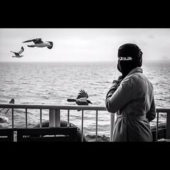 Ferry to Princess Islands, Istanbul (Mustafa Selcuk) Tags: street blackandwhite bw monochrome ferry turkey streetphotography monochromatic istanbul fujifilm sb bnw princessislands siyahbeyaz xpro2