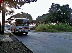 Santrans (Santa Cruz Line) (metrobus926_revival) Tags: condor santarosa sr ud sdx 9130 frontengine nissandiesel santrans cpb87n fe6b