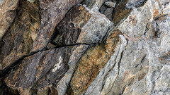 Macro Textures #FlickrPhotowalk (toonarmy59) Tags: california abstract texture rock outdoors iron outdoor textures lakeelsinore flickrphotowalk macrotextures macromondays