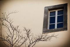 Orvieto - (Mark_66it) Tags: nikon finestra umbria orvieto d2xs