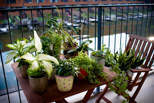 my small balcony