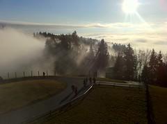 Nebel über dem Rheintal und dem Bodensee (docwatson_68) Tags: mountain lake berg fog austria österreich nebel bregenz pfänder rheintal bodensee vorarlberg