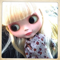IMG_4117