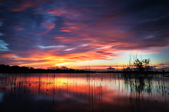 Backyard View (Oilfighter) Tags: sunset red lake storm reflection clouds canon texas tx houston swamp twigs sugarland clearingstorm 1740mmf4 5dmarkii leegraduatednd