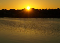 Preston Sun