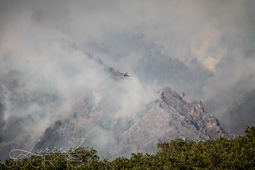 Alpine Quail Fire (14 of 33)